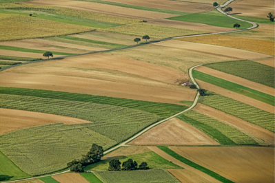 Agriculture image